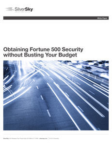 Fortune 500 Security on a Budget