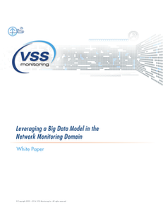 How to Leverage a Big Data Model in the Network Monitoring Domain
