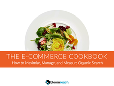The e-Commerce Cookbook: How to Maximize, Manage, and Measure Organic Search