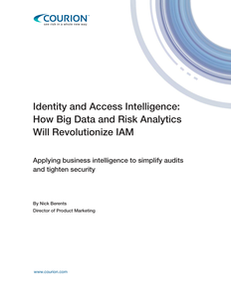 Identity and Access Intelligence: How Big Data and Risk Analytics Will Revolutionize IAM
