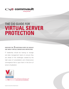 The CIO Guide for Virtual Server Protection