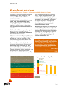 Beyond Good Intentions:  An Introduction to the 2014 Information Risk Maturity Index