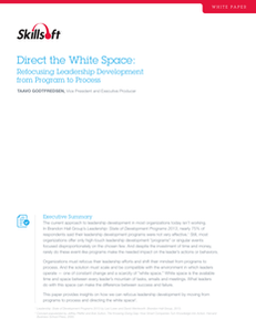 Direct the White Space:  Refocusing Leadership Development from Program to Process