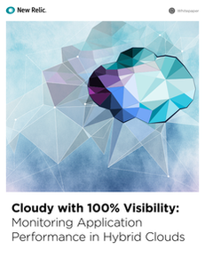 Cloudy with 100% Visibility: Monitoring Application Performance in Hybrid Clouds
