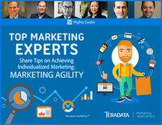 Top Marketing Experts Share Tips on Achieving Individualized Marketing:  Marketing Agility