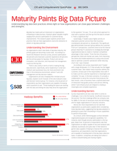 QuickPulse – Maturity Paints Big Data Picture