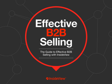 Effective B2B Selling: The Guide to Effective B2B Selling with InsideView