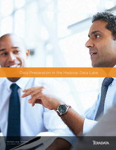 Significantly Improve Productivity in the Hadoop Data Lake