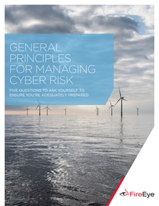 General Principles for Managing Cyber Risk