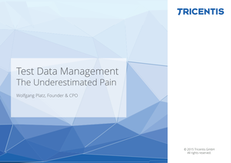 Test Data Management: The Underestimated Pain