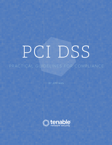 PCI DSS: Practical Guidelines for Compliance
