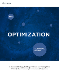 The Website Optimization Survival Guide