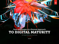 Four Advantages of a Planned Approach to Digital Maturity