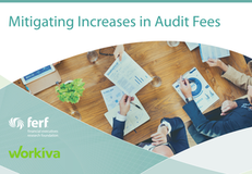 7 Ways to Mitigate Increases in Audit Fees