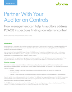 5 Ways to Partner With Your Auditor on Controls