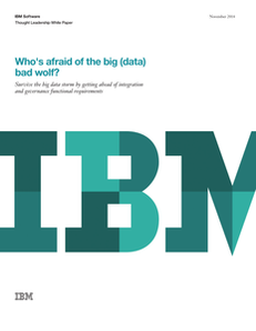 Who's Afraid of the Big (Data) Bad Wolf?