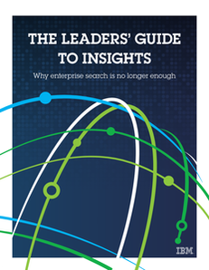 The Leaders Guide to Insights