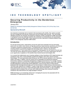 Securing Productivity in the Borderless Enterprise