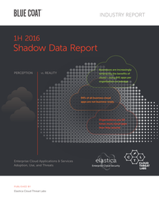 Shadow Data Report