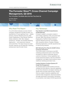 The Forrester Wave: Cross-Channel Campaign Management, Q2 2016