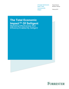 The Total Economic Impact™ Of Selligent