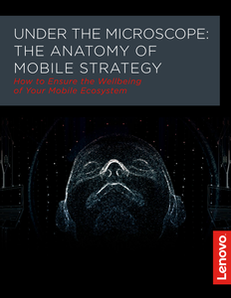 The Anatomy of Today's Mobile Organization