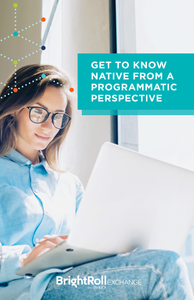 Get to Know Native from a Programmatic Perspective