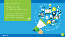 Amplify Your Voice of the Customer Initiatives