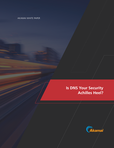 Is DNS Your Security Achilles Heel?