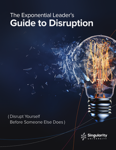 The Exponential Leader's Guide to Disruption shows how to disrupt yourself before someone else does.