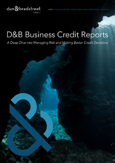 D&B Business Credit Reports