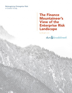The Finance Mountaineer's View of the Enterprise Risk Landscape