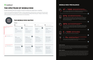 The Spectrum of Mobile Risk