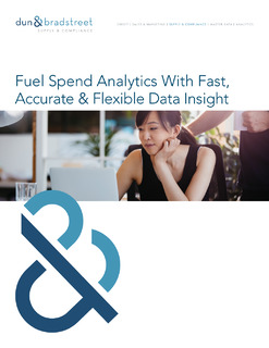 Fuel Spend Analytics With Fast, accurate & Flexible Data Insight (UK)