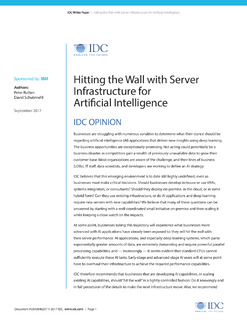 Hitting the Wall with Server Infrastructure for Artificial Intelligence