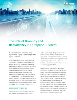 The Role of Diversity and Redundancy in Enterprise Business