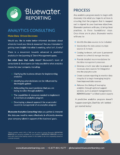 Bluewater Reporting: Analytics Consulting