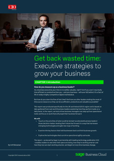 Get Back Wasted Time: Executive Strategies To Grow Your Business