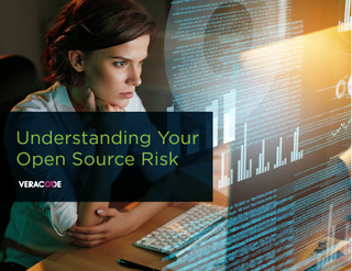 Understanding Your Open Source Risk