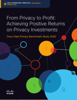 From Privacy to Profit: Achieving Positive Returns on Privacy Investments