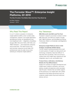 Forrester Wave: Enterprise Insight Platforms. The Nine Providers That Matter Most And How They Stack