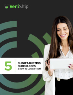 Ebook: 5 Budget-Busting Surcharges and How to Lower Them