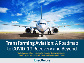 Transforming Aviation: A Roadmap to COVID-19 Recovery and Beyond