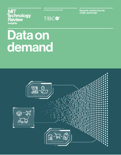 Data on Demand: Dynamic Architecture for a High-speed Age