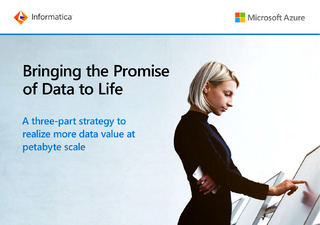 Bringing the Promise of Data to Life
