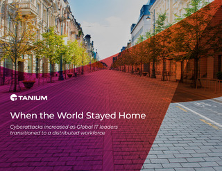 Research Report: When the World Stayed Home