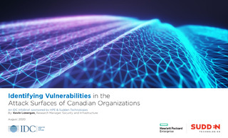 Identifying Vulnerabilities in the Attack Surfaces of Canadian Organizations