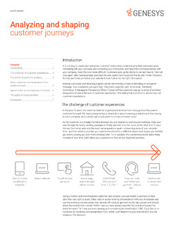 Altocloud White Paper: Analyzing and Shaping Customer Journeys