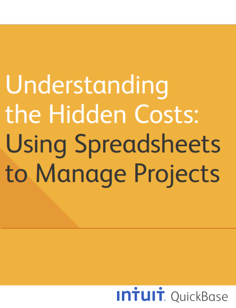 Understanding the Hidden Costs:  Using Spreadsheets to Manage Projects