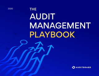 The Audit Management Playbook